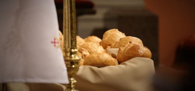 Chrystus zmartwychwstał! Alleluja! Za nami piękne dni Triduum Paschalnego. Wraz z Chrystusem opuszczonym, wydanym, skazanym, umęczonym, ukrzyżowanym, umarłym i złożonym do grobu szliśmy drogą wyznaczoną przez liturgię tych dni do […]